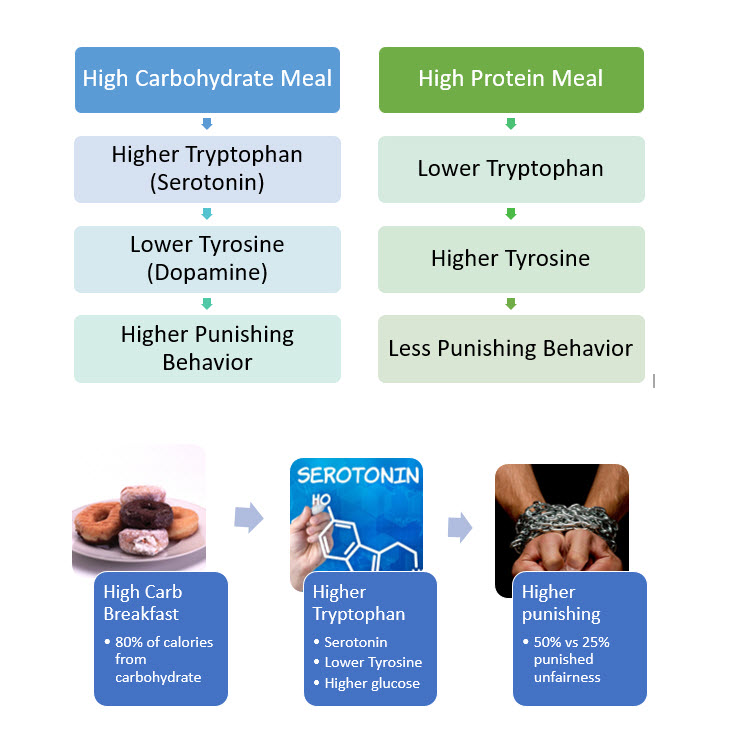 Higher Carbohydrate Meals Increase Punishment
