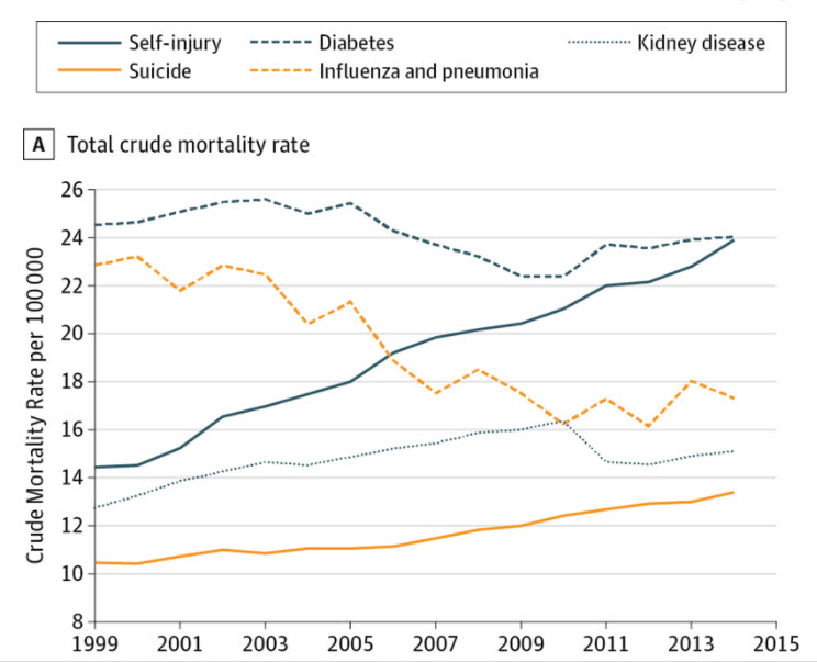 Self Harm and Suicide Rates